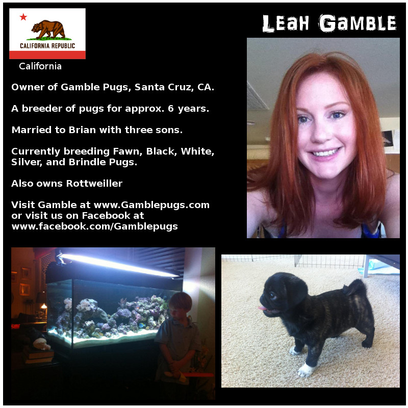 Leah Gamble Breeder Biography