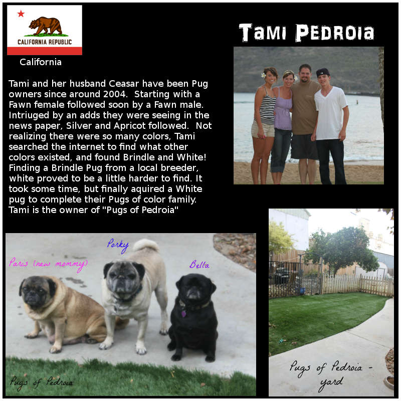 Tami Pedroia Breeder Biography